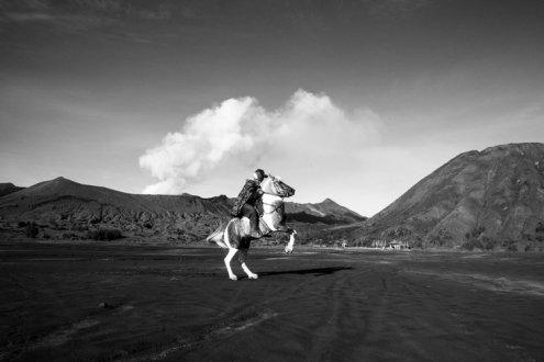 Volcano+Horses+by+Fraser+Morton30-2 (1)