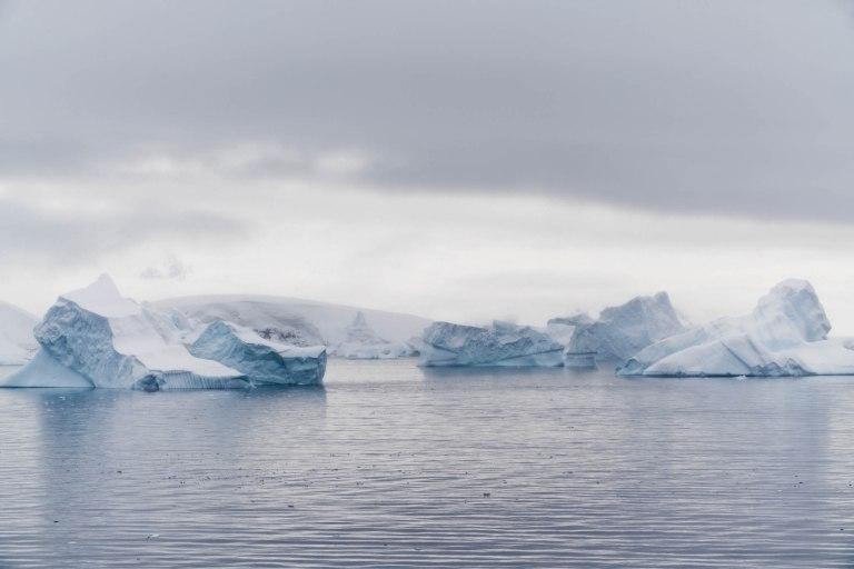Antarctica Copyright Fraser Morton_DSC7791